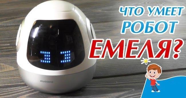 Робот-няня Емеля – детальное описание работы Roobo Pudding